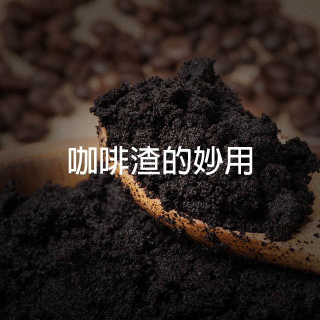 咖啡渣 - coffee grounds