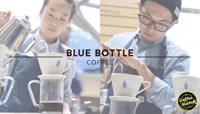 bluebottle-clark